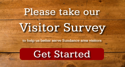 visitors survey